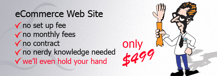 $499 eCommerce Web Site